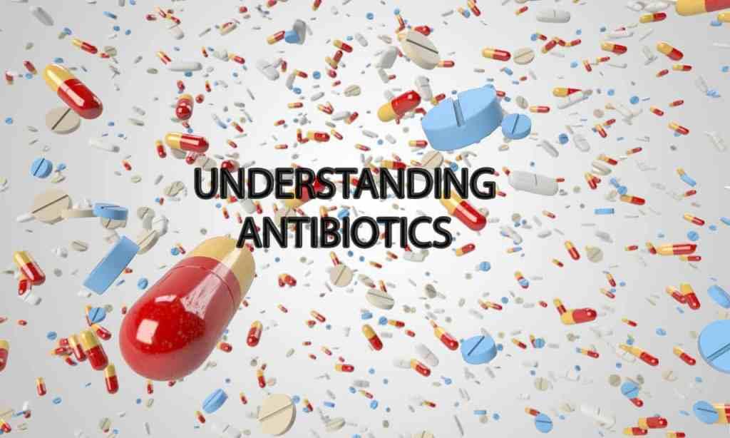 prepper antibiotics