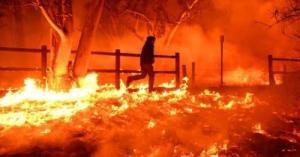 """It Was Like A War Zone"" – Heavy Winds Push Wildfires Toward San Diego As Bel Air Burns"