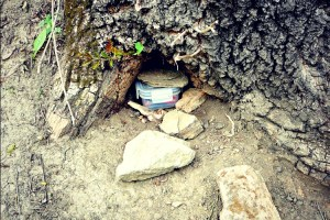 SELCO: What You Need to Know About Survival Caches