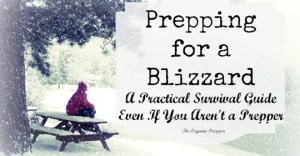 Prepping for a Blizzard: A Practical Survival Guide