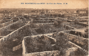 Fruit Walls: Urban Farming 16th to 20th Century – Mediterranean fruits and vegetables grown as far north as England and the Netherlands