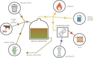 A Prepper's Guide to Biogas as an Alternative Fuel