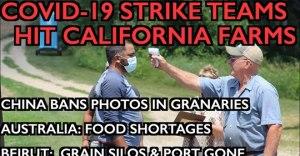COVID-19 Strike Teams Shut Down Farms – FoodWars Go Hot – Beirut, Australia, China Shortages