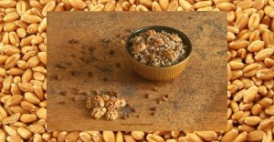 A Prepper's Guide to Wheat Berries: Versatile, Space-Saving, Long-Term Food