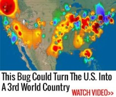 This bug could kill millions