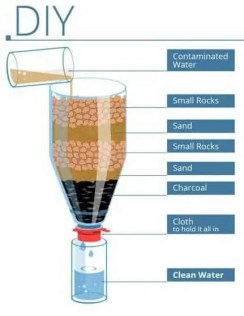 water filter survival