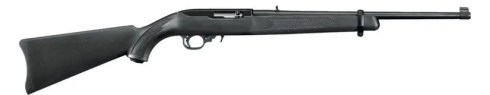 ruger 10-22 survival rifle