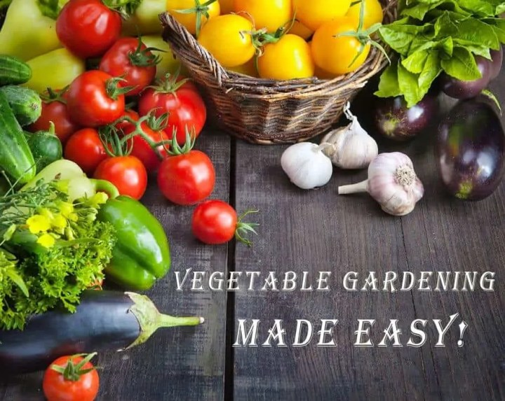 Prepper's Will - Vegetable Gardening Crash Course