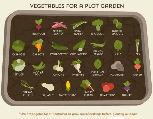 Prepper's Will - Vegetable for a plot garden