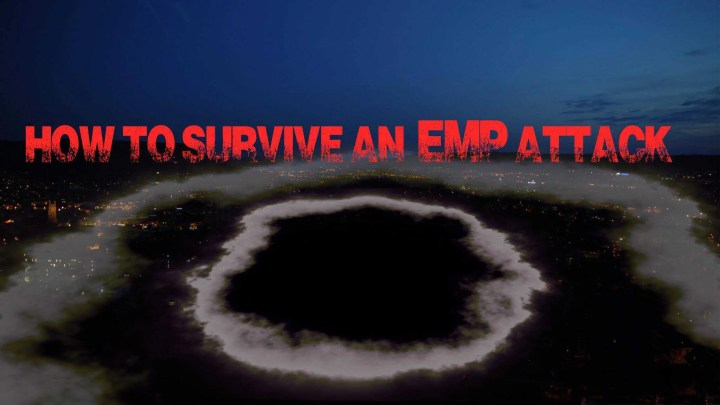 Prepper's Will - EMP attack survival guide