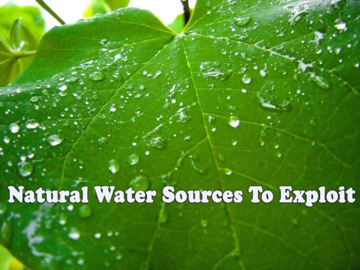 Prepper's will - Natural Water Sources to exploit