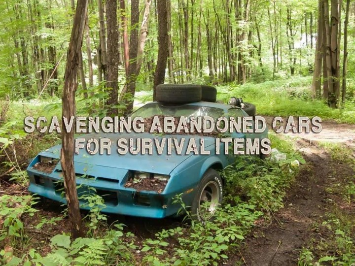 Prepper's Will - Scavenging abandoned cars for survival items