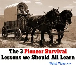 3 pioneer survival lessons