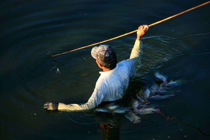 Survival fishing how to catch a fish without a fishing for How to make a fishing spear