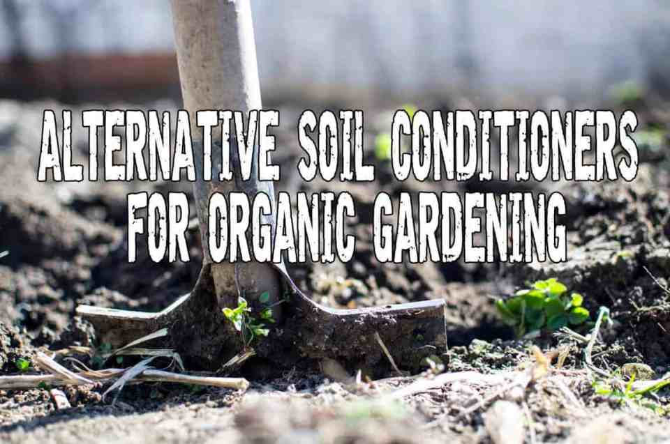 Alternative soil conditioners for organic gardening