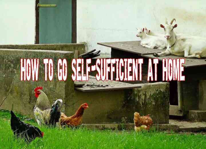 How to go self-sufficient at home