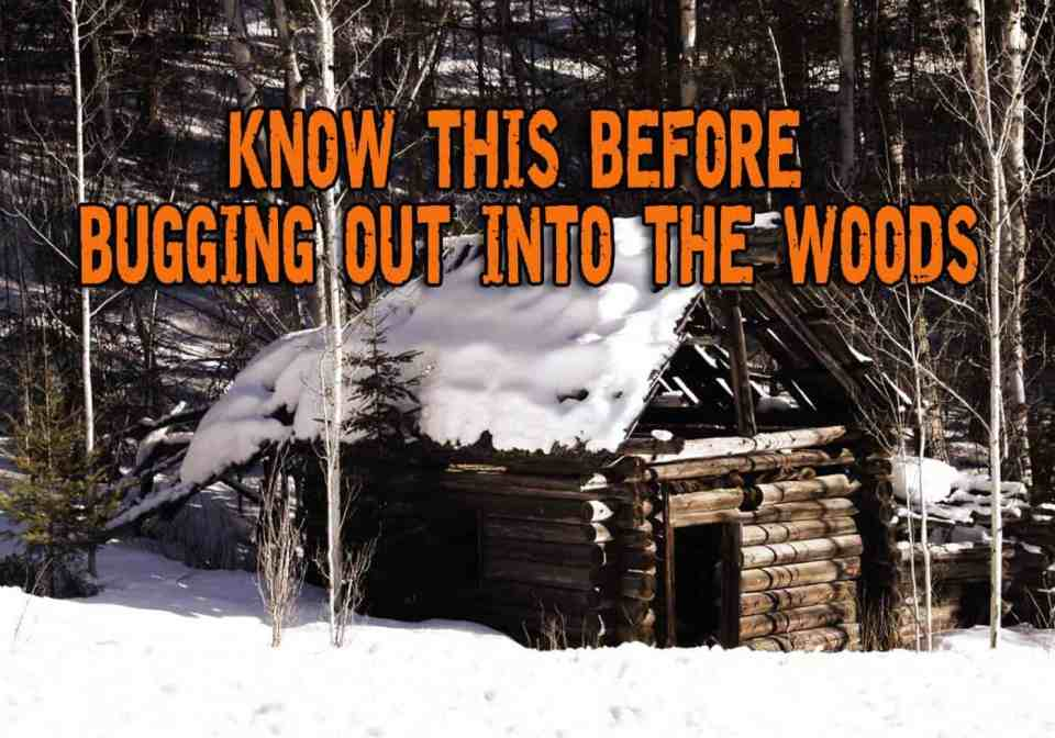 A Few Considerations Before Bugging Out Into the Woods