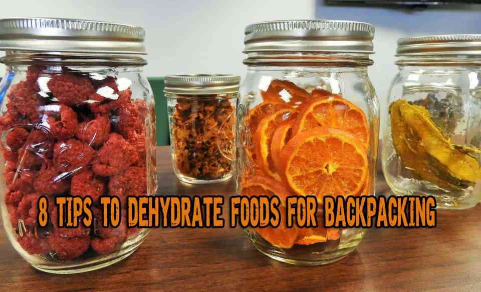 8 Tips to Dehydrate Foods for Backpacking or Outing