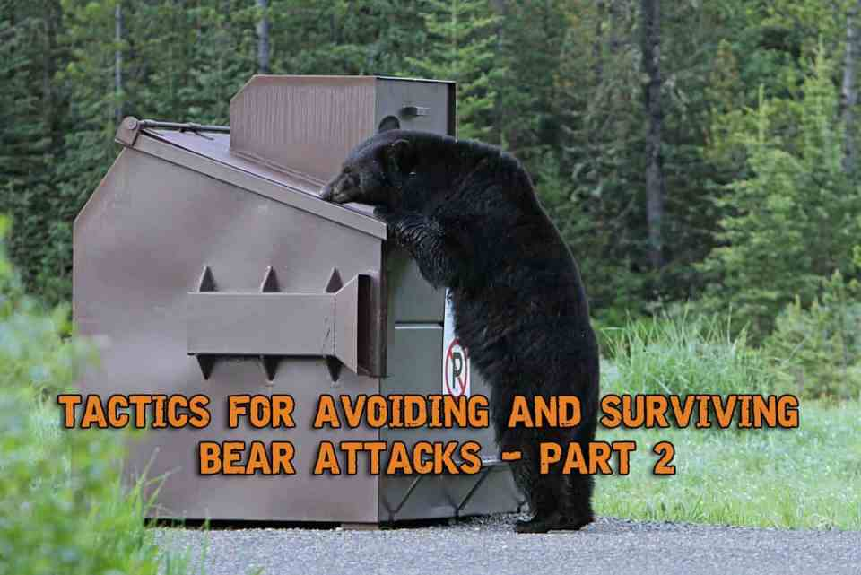 Tactics For Avoiding And Surviving Bear Attacks - Part 2