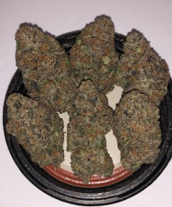 """This mysterious strain, supposedly from somewhere in Florida and originally call """"Triangle,"""" is aptly name; Buy gelato near me talenti strains gelato vs ice cream"""