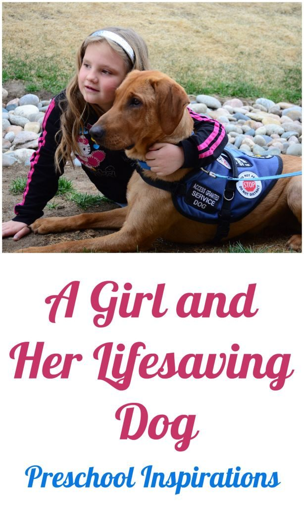 A Girl and Her Lifesaving Dog by Preschool Inspirations