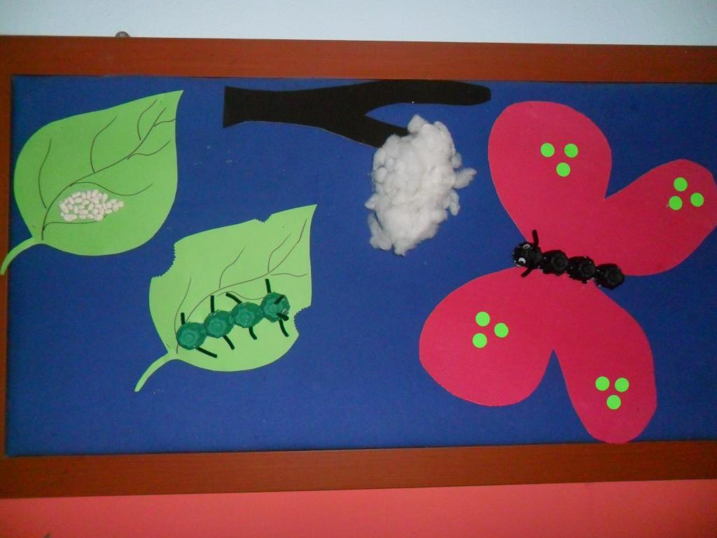Life Of Cycle Butterfly Craft Idea Preschoolplanet