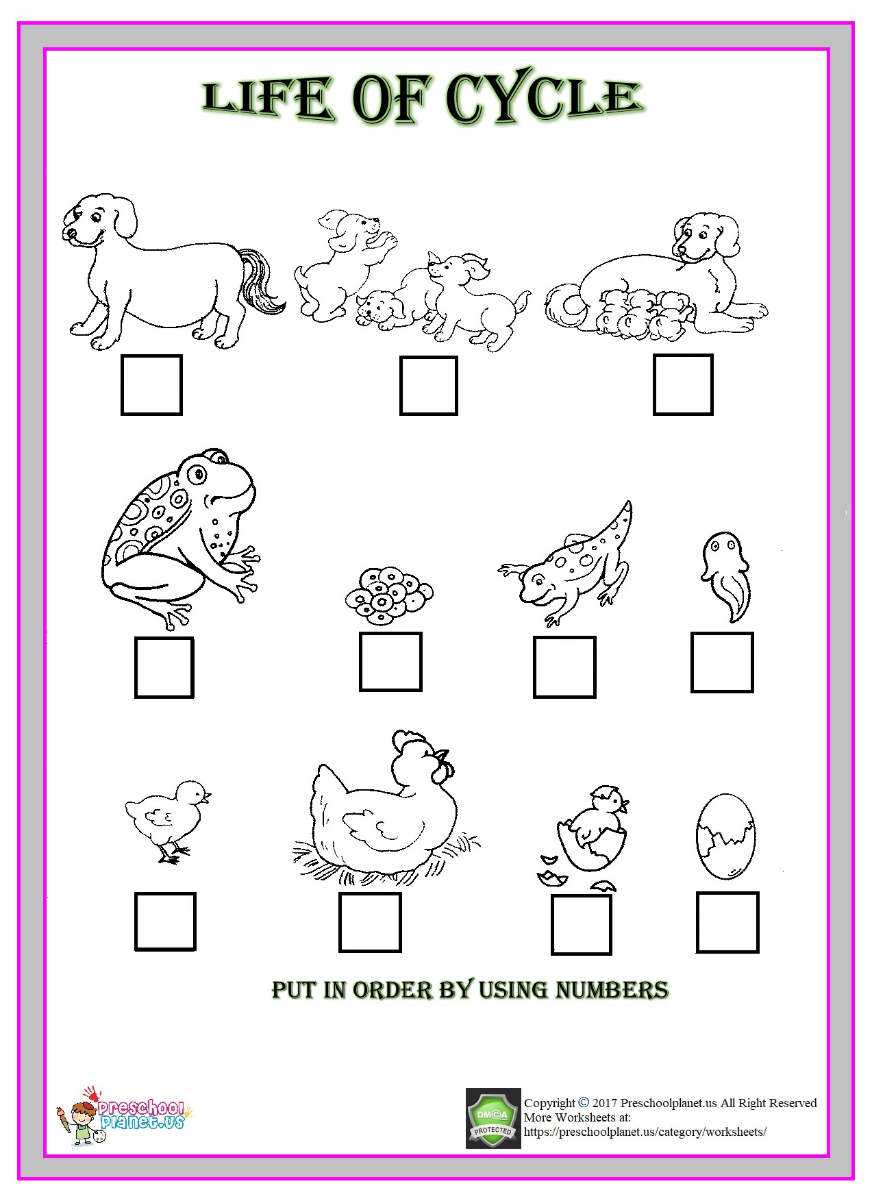 Life Of Cycle Animals Worksheet For Kindergarten