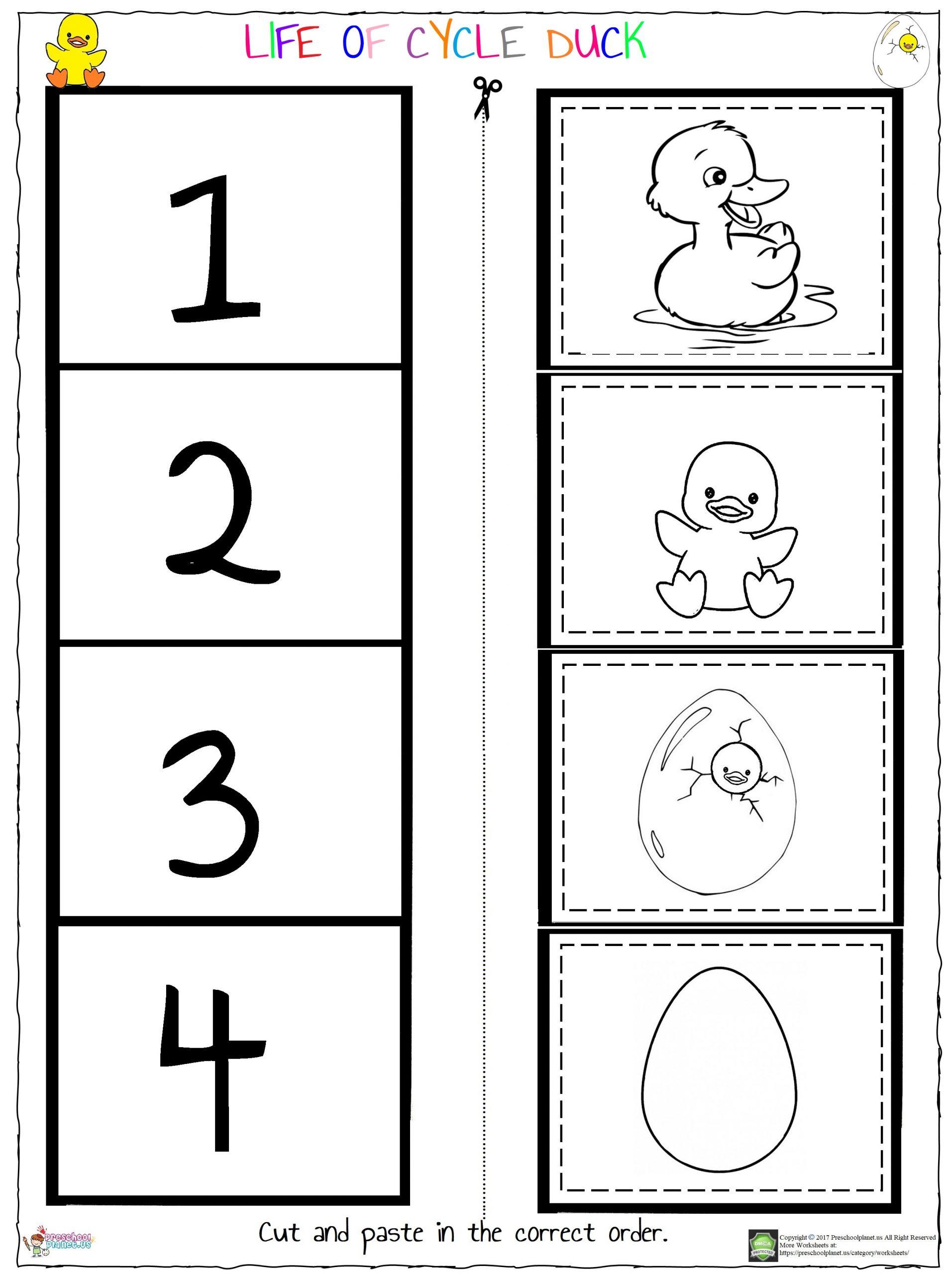 Worksheets Preschoolplanet