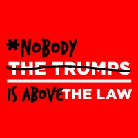 Nobody is Above the Law  RALLY