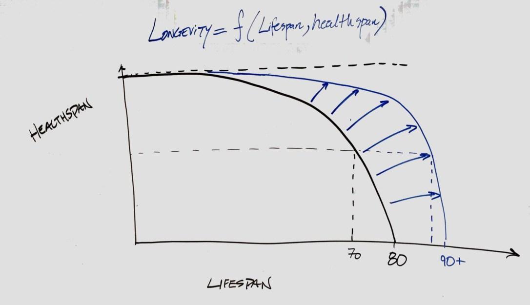 Longevity-White-board