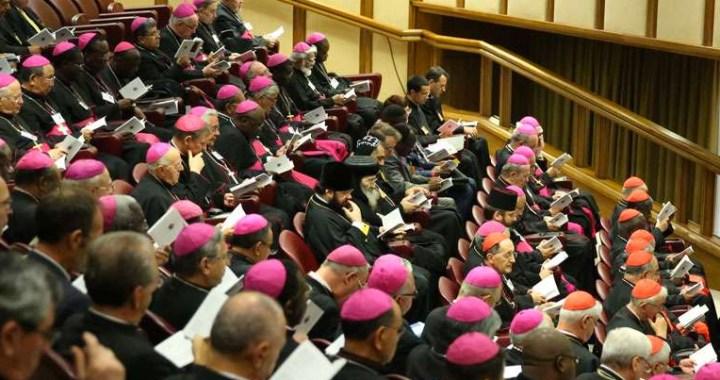 El Vaticano anuncia el título de la Exhortación Apostólica post sinodal sobre la Amazonía