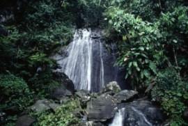 Cascada en El Yunque. (Foto / Suministrada)
