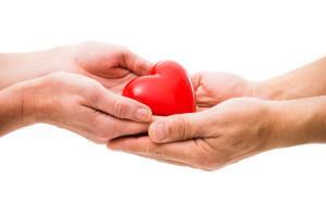 Heart in Human Hands