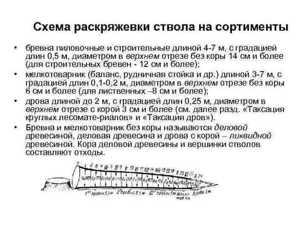 ТАКСАЦИЯ ЛЕСА Единицы измерений приборы инструменты Единицы