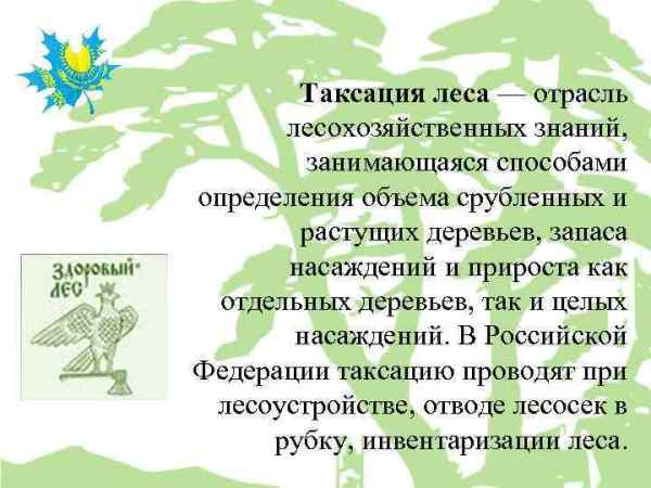 Порядок проведения лесоустройства Лесоустройство система ...