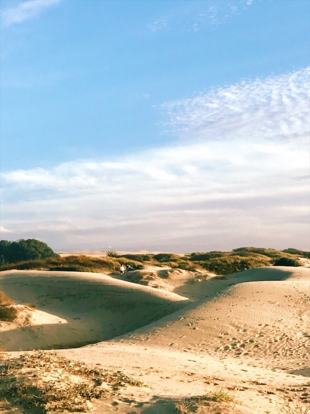 pismo-dunes-beach
