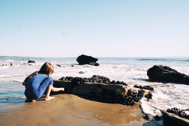 refugio-beach-santa barbara