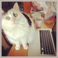 Izzy, PiP assistant, hard at work.