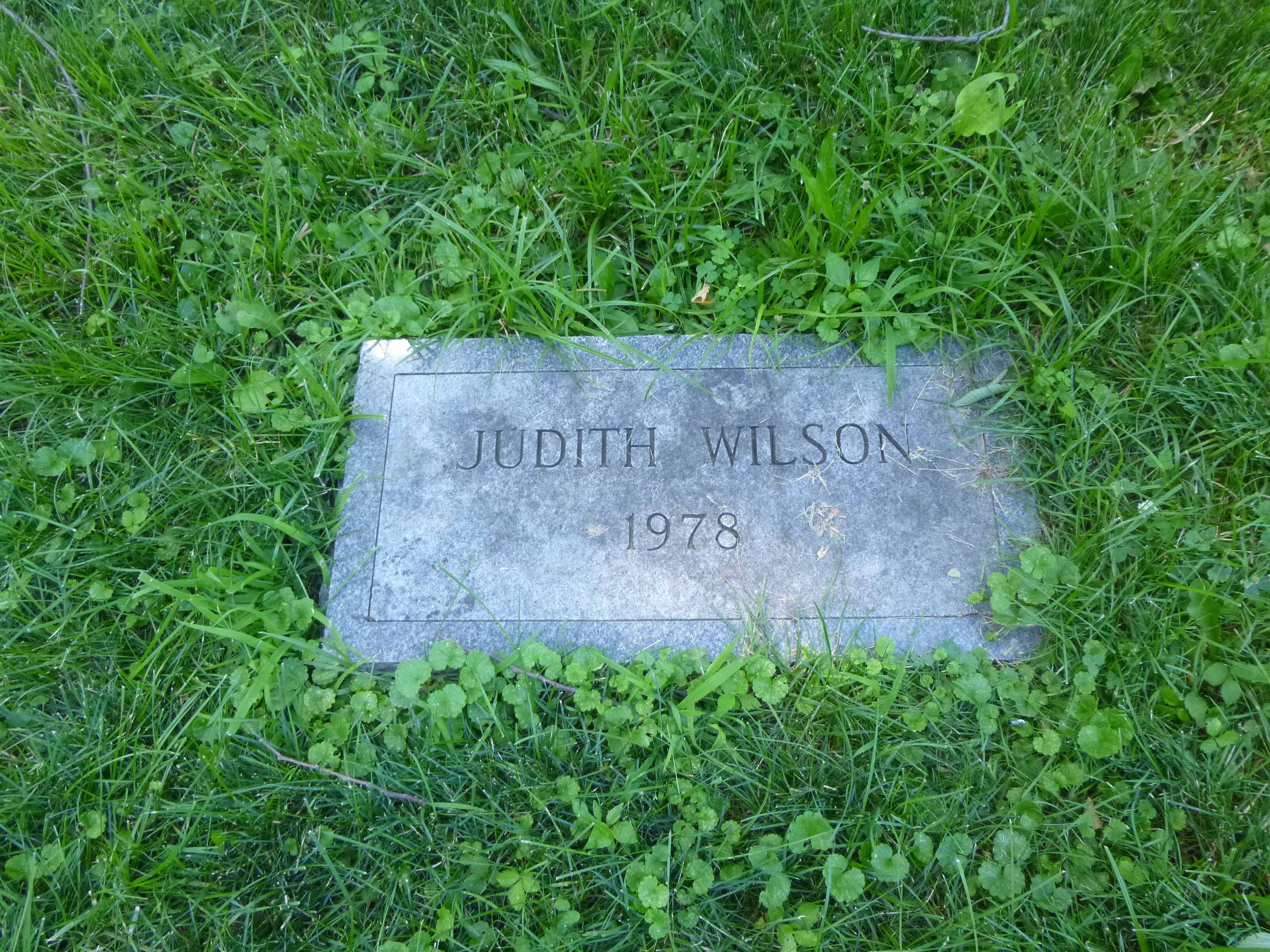 Read more about the article Judith Wilson