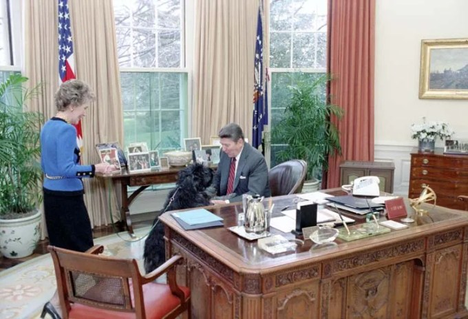 Lucky checks out the Oval Office, March 7, 1985. Photo courtesy Reagan Library.
