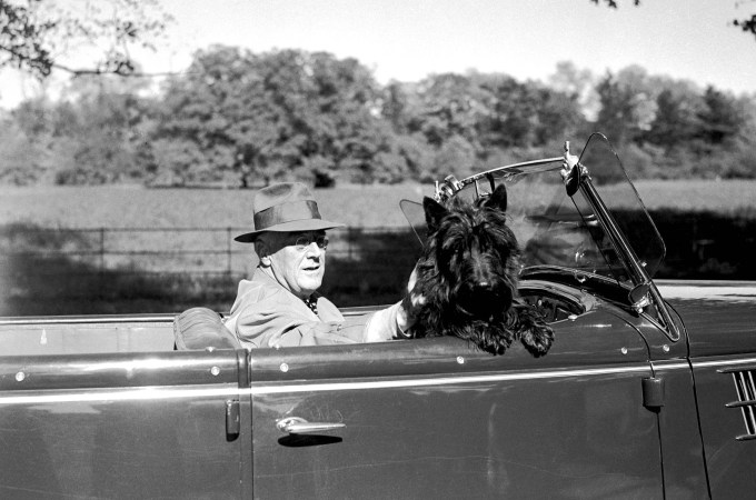 FDR's Famous Scottish Terrier, Fala