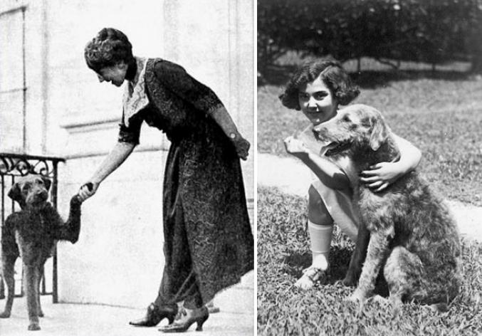 laddie-boy-presidential-pets