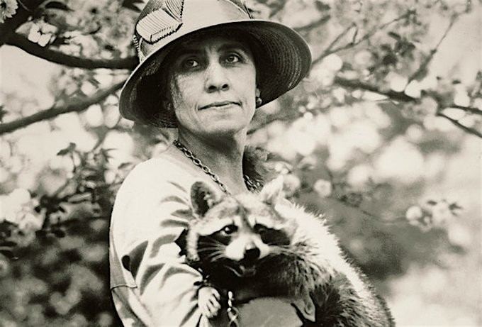 Grace Coolidge with Rebecca, a cherished pet raccoon.