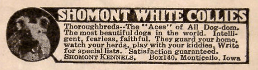 shomont-collies-advertisement-1926