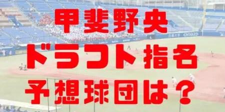 2018年 ドラフト 東洋大 甲斐野央 指名予想球団 成績 経歴 特徴