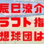 2018年 ドラフト 立命館 辰巳涼介 指名予想球団 成績 経歴 特徴