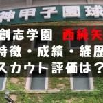 2019年 ドラフト 創志学園 西 純矢 甲子園 16奪三振 成績 経歴 特徴