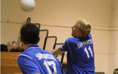 BVB: Dons make statement with sweep over Royals
