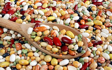 Sansum Nutrition for Athletes:  Beans – Nuisance or Aid to Athletes?
