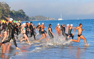 SB's Ocean Swimmer of the Year competition underway